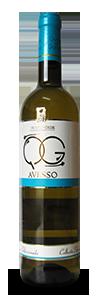 QG-Avesso_8096